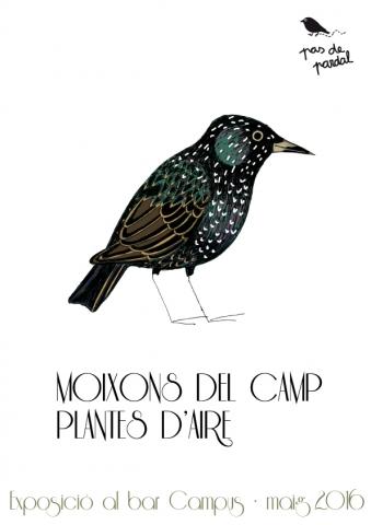 """Exposició """"Moixons del Camp, plantes d'aire"""" al Bar Campus"""