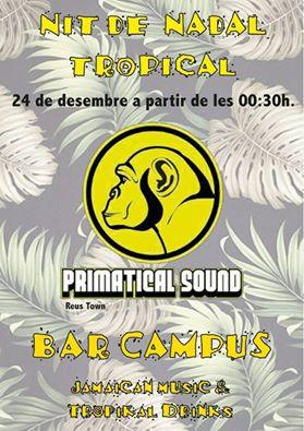Sessió musical de la Nit de Nadal al Bar Campus amb Primatical Sound