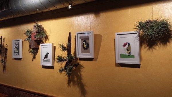 Ocells i plantes