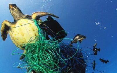 La mar Mediterrània: una sopa de plàstics